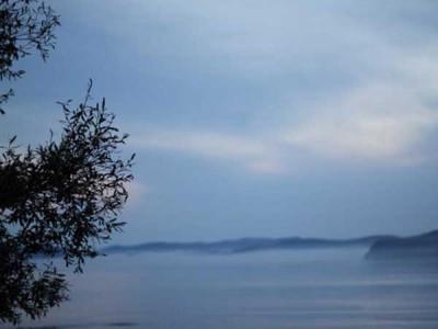 Nature_Vladivostok600X450